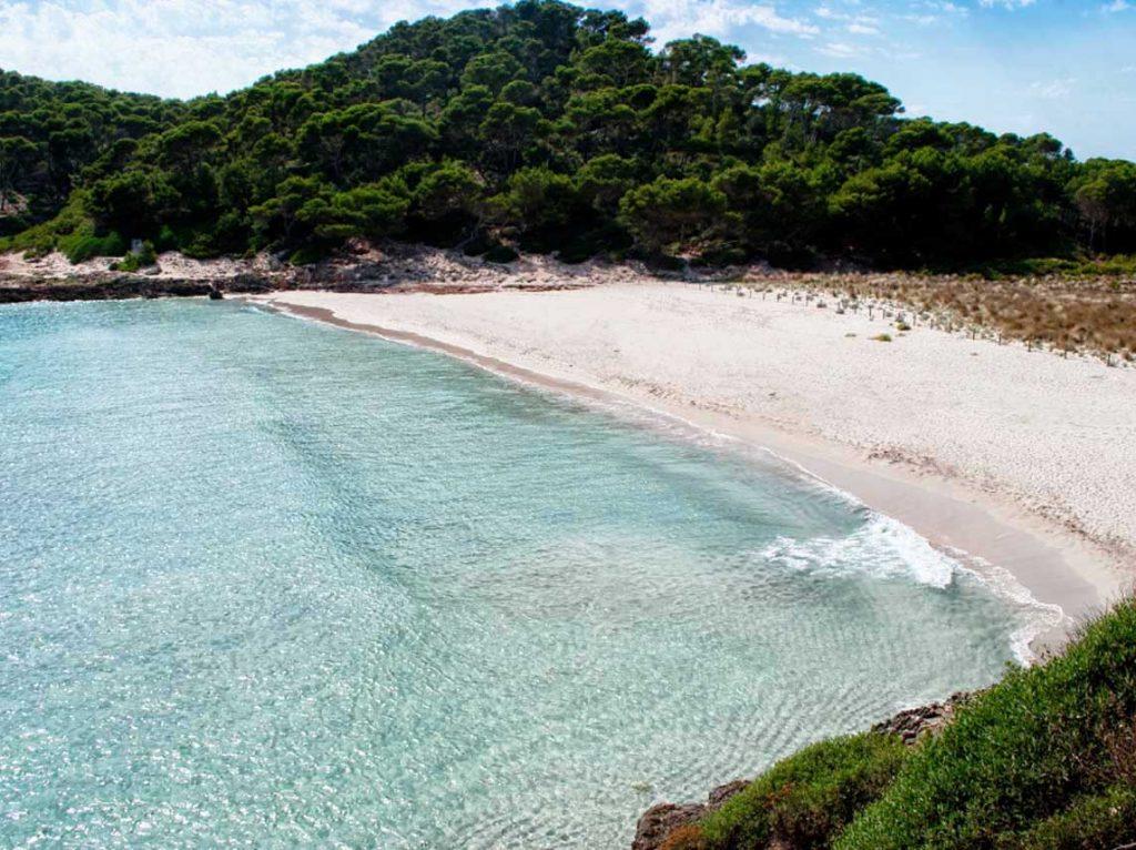 Adegas Algarve